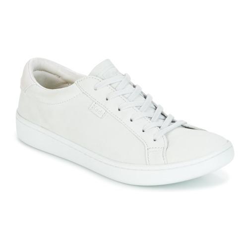 Keds ACE MONO Grau  Schuhe Sneaker Low Damen 63,99