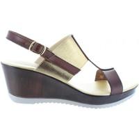 Schuhe Damen Sandalen / Sandaletten Cumbia 30133 Marrón