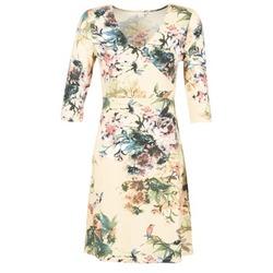 Kleidung Damen Kurze Kleider Cream ROSEMARY Multifarben
