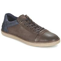 Schuhe Herren Sneaker Low Kickers CALIC Braun