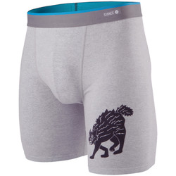 Kleidung Herren Boxershorts/Slips Stance Essentials Whiskey Cat Grau