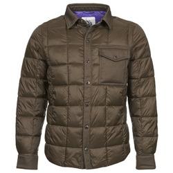 Kleidung Herren Jacken U.S Polo Assn. PADDED Bronze