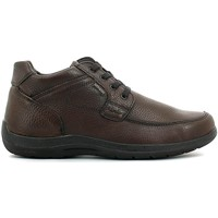 Schuhe Herren Boots Enval 6904 Shoes with laces Man Brown Brown