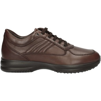 Schuhe Herren Sneaker Low Imac 60990 U BROWN