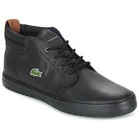 Schuhe Herren Sneaker High Lacoste AMPTHILL TERRA Schwarz