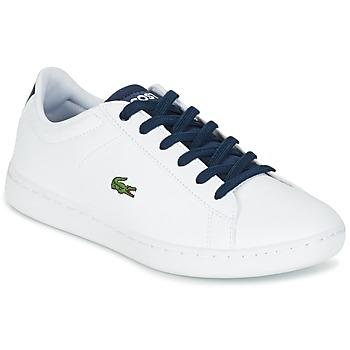 Schuhe Kinder Sneaker Low Lacoste CARNABY EVO Weiss / Marine