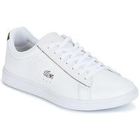 Schuhe Damen Sneaker Low Lacoste CARNABY EVO Weiss