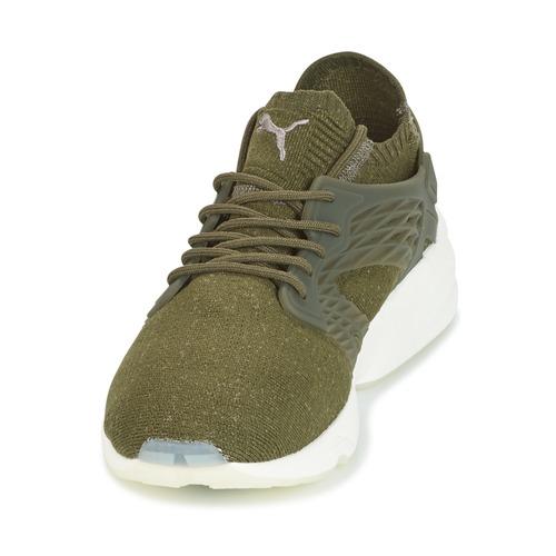 Puma BLAZE CAGE EVOKNIT Kaki  Schuhe Sneaker Low Herren 95,20