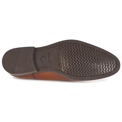 Geox U HAMPSTEAD Braun  Schuhe Derby-Schuhe Herren 124