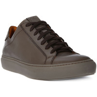 Schuhe Herren Sneaker Low Lion WEST 311    155,8