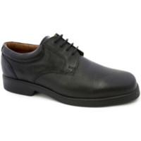 Schuhe Herren Derby-Schuhe Danka Waiter Schnürsenkel  schwarz Schwarz