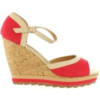 Schuhe Damen Sandalen / Sandaletten Maria Mare 65895 Rojo