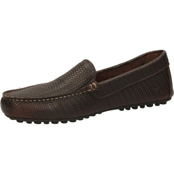 Schuhe Herren Slipper Frau BRIOtreccia MISSING_COLOR