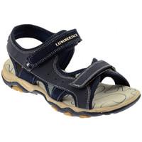 Schuhe Kinder Sandalen / Sandaletten Lumberjack LEVI sandale