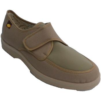 Schuhe Herren Hausschuhe Doctor Cutillas Zaptilla Mann mit Klettverschluss sehr k Beige