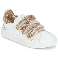 Schuhe Damen Sneaker Low Ippon Vintage FLIGHT POLAR Weiss / Kupfer