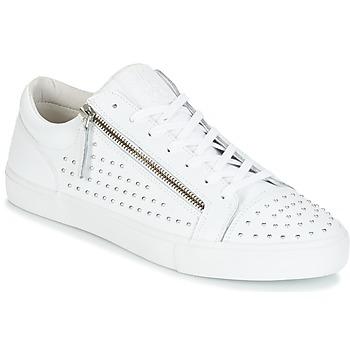 Schuhe Herren Sneaker Low Jim Rickey ZED STUDS Weiss / Silbern