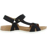 Schuhe Herren Sandalen / Sandaletten Panama Jack FRODO NAVY C1 Azul