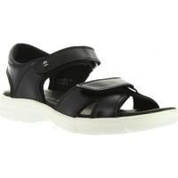 Schuhe Herren Sandalen / Sandaletten Panama Jack SANDERS BW C1 Negro