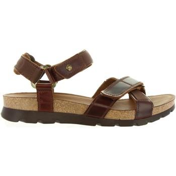 Schuhe Herren Sandalen / Sandaletten Panama Jack SAMBO CLAY C1 Marrón