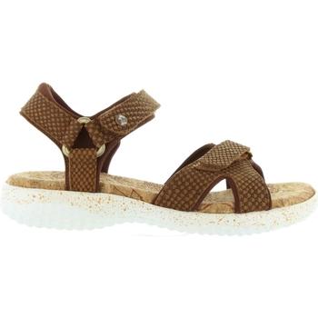 Schuhe Damen Sandalen / Sandaletten Panama Jack NOJA SNAKE B3 Marrón