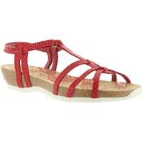 Schuhe Damen Sandalen / Sandaletten Panama Jack DORI RUN B5 Rojo