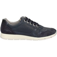 Schuhe Damen Sneaker Low Imac 72260 D BLUE