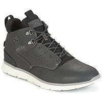 Schuhe Herren Sneaker High Timberland KILLINGTON HIKER CHUKKA Grau