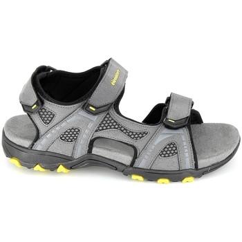 Schuhe Herren Sandalen / Sandaletten Elementerre Calcha Gris Jaune Grau