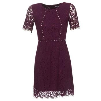 Kleidung Damen Kurze Kleider Morgan ROUJEL Bordeaux