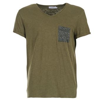 Kleidung Herren T-Shirts Eleven Paris ABICO Kaki