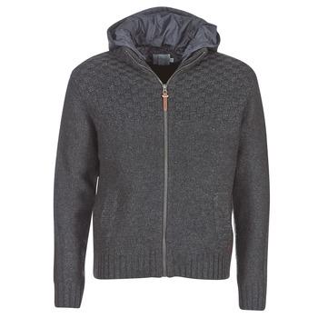 Kleidung Herren Jacken Pepe jeans ROGER Grau