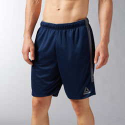 Kleidung Herren Shorts / Bermudas Reebok Sport Workout Ready Knit Shorts Blau