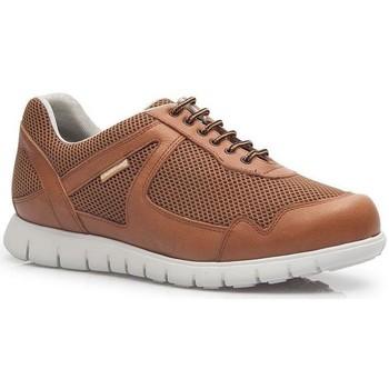 Schuhe Herren Sneaker Low Calzamedi DEPORTIVO CORDONES CUERO