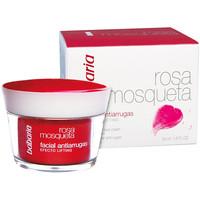 Beauty Damen pflegende Körperlotion Babaria Rosa Mosqueta Antiarrugas Crema Facial