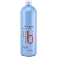 Beauty Shampoo Broaer B2 Nourishing Shampoo