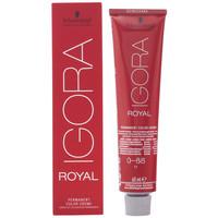Beauty Damen Haarfärbung Schwarzkopf Igora Royal 0-88