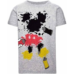 Kleidung Jungen T-Shirts Name It Kids NITMICKEY COLT SS TOP MINI Grau