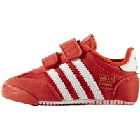 Schuhe Kinder Sneaker Low adidas Originals Dragon Learn 2 Walk Schuh red