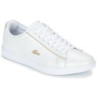 Schuhe Damen Sneaker Low Lacoste CARNABY EVO 118 6 Weiss