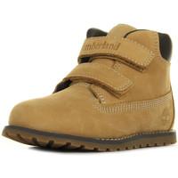 Schuhe Jungen Boots Timberland Pokey Pine Wheat Beige