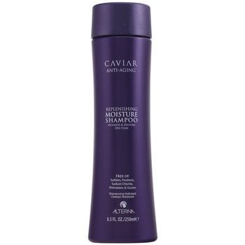 Beauty Shampoo Alterna Caviar Anti-aging Replenishing Moisture Shampoo