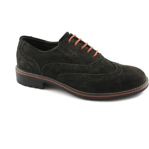 Igi&co IGI & CO 86812 caffeebraun Männerkleidung Schuhe Stickerei Engli Marrone