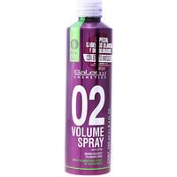 Beauty Spülung Salerm Volumen Spray Root Lifter  250 ml