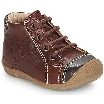 Schuhe Jungen Boots GBB NOE Stein / kaffee / Dpf / Raiza