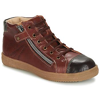 Schuhe Jungen Boots GBB NICO Stein / kaffee / Dpf / 2835