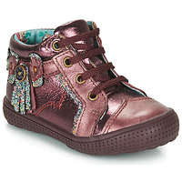 Schuhe Mädchen Boots Catimini RHUBARBE Bordeaux