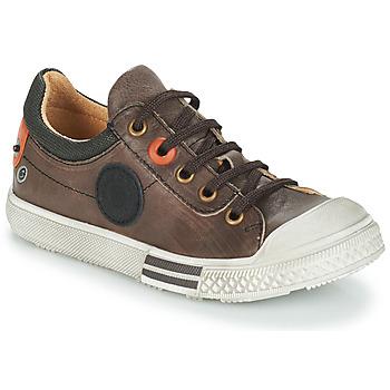 Schuhe Jungen Boots GBB UGO Braun