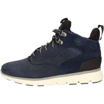Schuhe Jungen Sneaker High Timberland CA1JD6 Halbstiefel Junge Blau Blau
