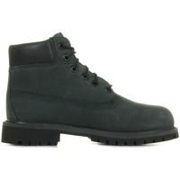 Schuhe Kinder Boots Timberland 6 In Premium Wp Grau